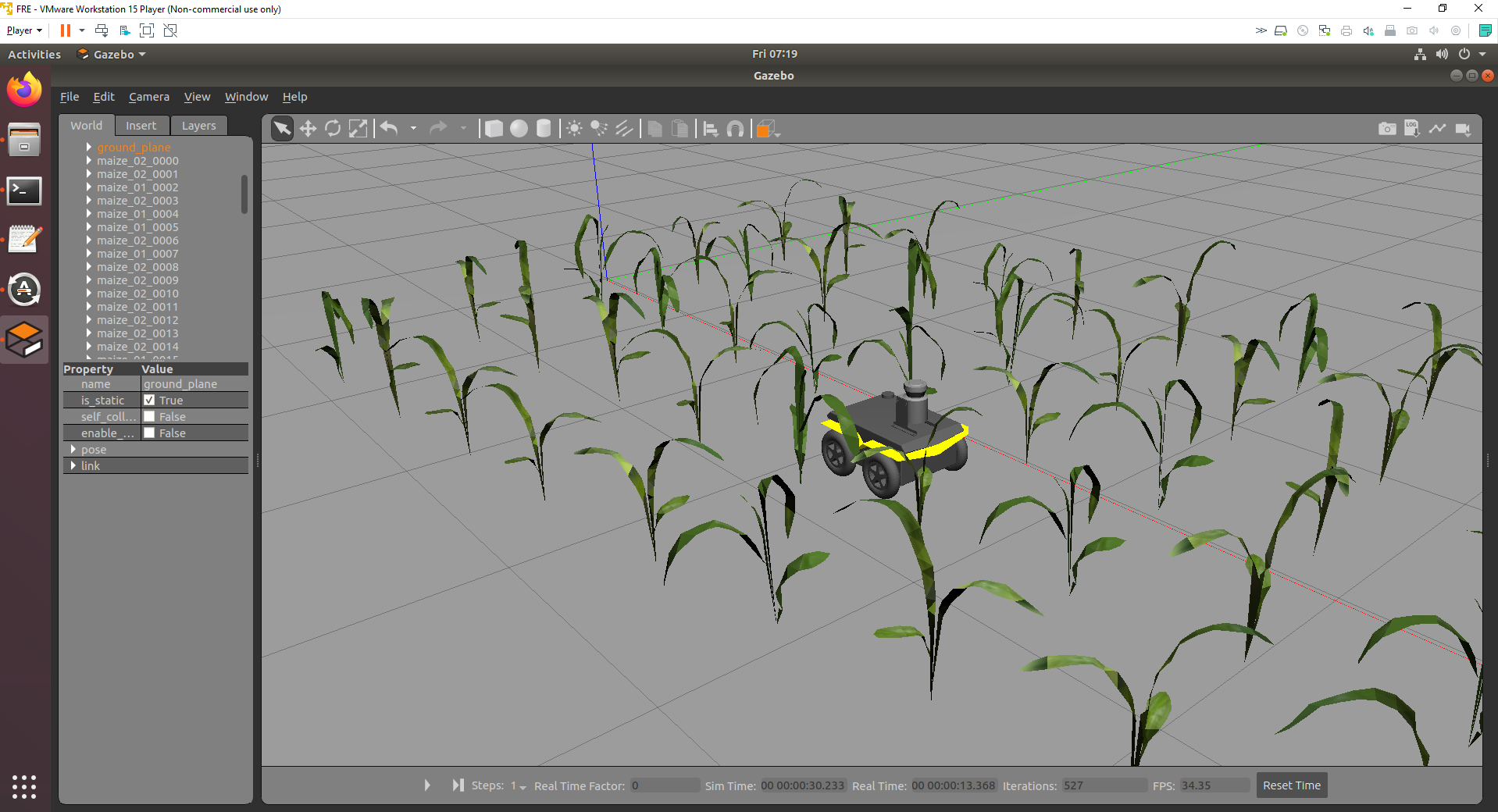 3D meshes of real maize plants.